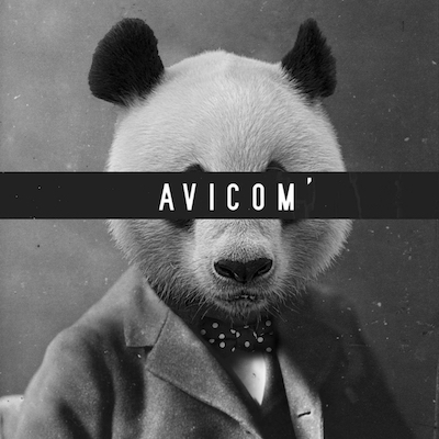 AVICOM'