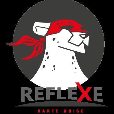 Reflexe Carte Grise